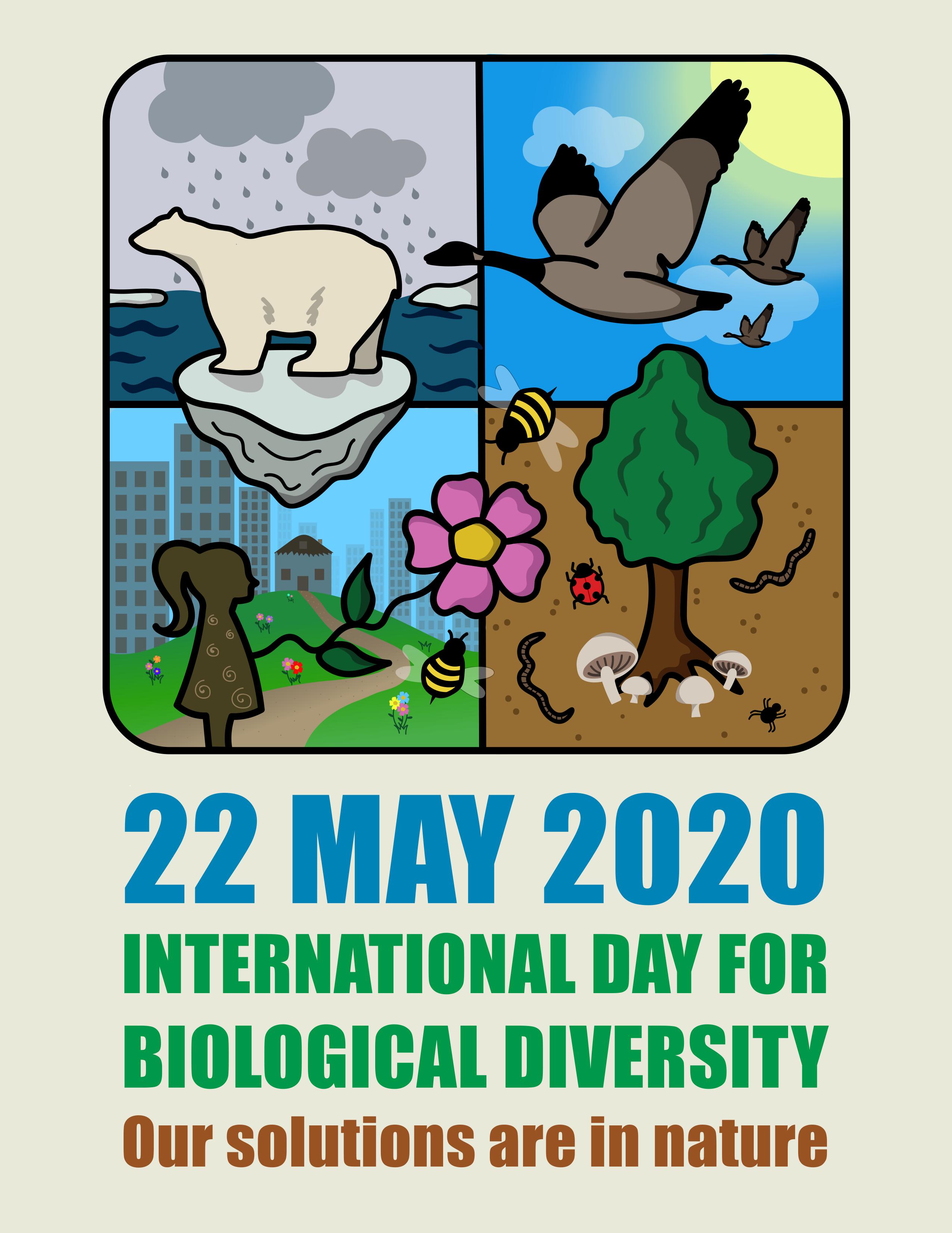 522 國際生物多樣性日